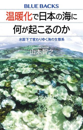 守ろう!私たちの綺麗な海 Vol.113