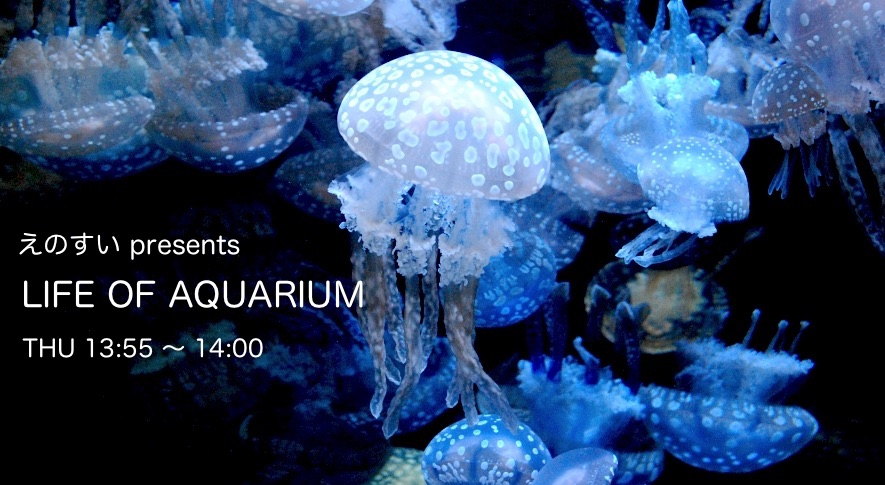 えのすい presents LIFE OF AQUARIUM - Fm yokohama 84.7