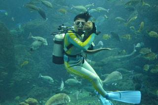 3月27日放送分〜相模湾大水槽の魚と仲良しダイバーさん!