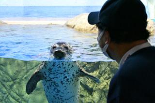 2月25日放送分〜えのすいの生き物の命を支える獣医さんのお仕事について!