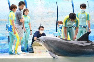6月25日放送分〜えのすい獣医さんのお仕事について。