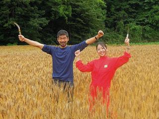 小麦作りプロジェクト~収穫篇(6月25日放送)