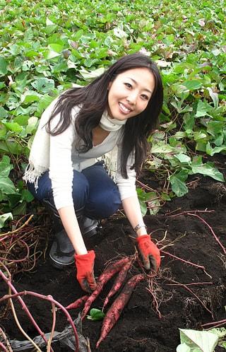 秋の定番 サツマ掘り(10月30日放送)