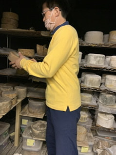 意外と知らないチーズの世界