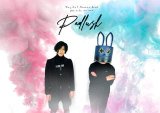 【Music Port】230組目 PADLUSH