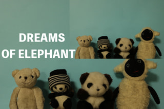 【Music Port】206組目 DREAMS OF ELEPHANT
