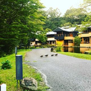 軽井沢で秋の味覚狩り♪