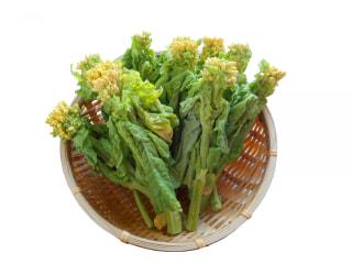 Shanti Time「菜の花おすすめレシピ」