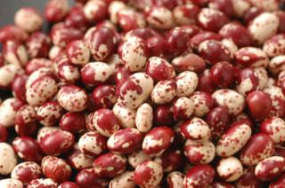 紅絞り豆の『お豆のチカラ』