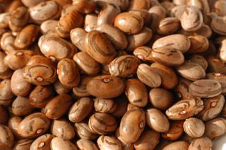 モロッコインゲン豆の『お豆のチカラ』