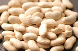白インゲン豆の『お豆のチカラ』