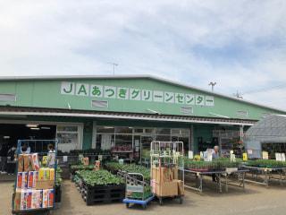 夏野菜のコンパニオン☆