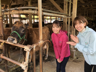 のぞみとはるか♡横須賀牧場物語