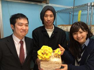 幸せの黄色い『タモギタケ』