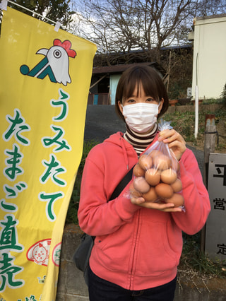 こりゃたま卵!横浜の元気な卵