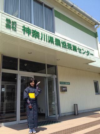 茶摘みガールが行く「足柄茶ツアー」(5月18日放送分)