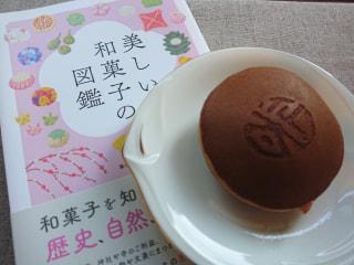 お茶が飲みたくなる一冊 「美しい和菓子の図鑑」をご紹介♪