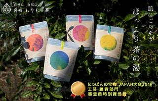 宮崎県・新富町「豊緑園」のお風呂に入れ茶う!茶の湯!