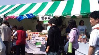 横浜セントラルタウンフェスティバル「Y152」開催中です!!
