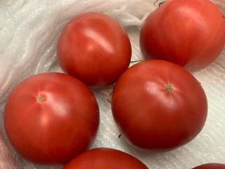 ラジショピ初登場の絶品濃厚フルーツトマト!