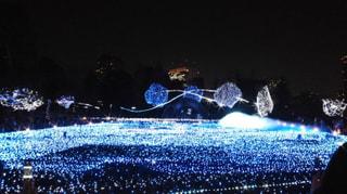 It's My イルミネーション 冬 2011 エントリー⑧