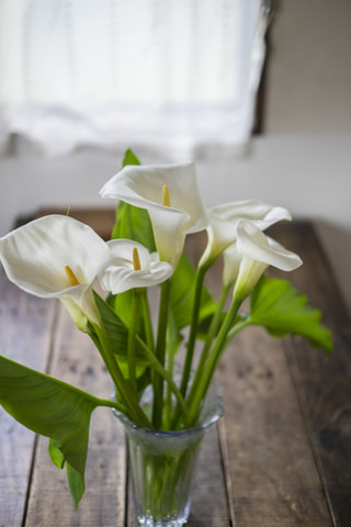 NITTEN ハナラボ 第33回 「花のビギナーさんもオススメの花を飾るスペース」