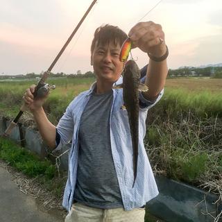 旬のお魚クイズ「ナマズ」
