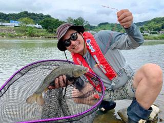 爆釣モーニング「相模川での鯉釣り実釣レポート」