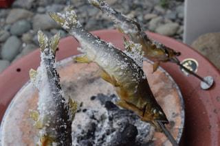 旬のお魚クイズ「鮎」②