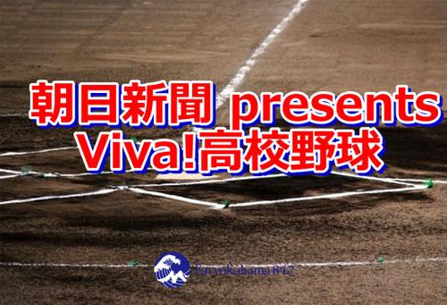 Presents_viva_2