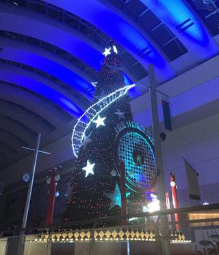 クイーンズスクエア クリスマスツリー 2018 点灯式