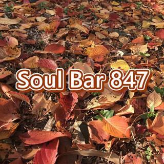 Soul Bar 847(2020.11.20)