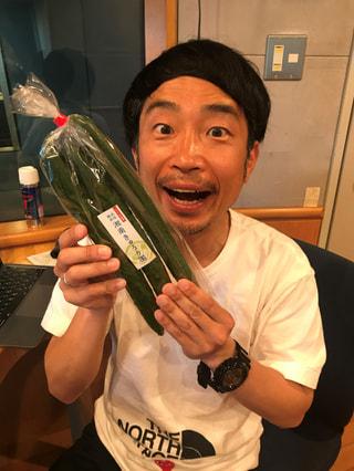 5/8 OA  平塚のきゅうり専門農家が登場!
