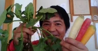2/7 OA  室町時代から続く茅ヶ崎の老舗農家がおススメ野菜をご紹介!